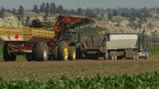 Montana Ag Network: New Farm Bill is good for sugar beet growers and consumers
