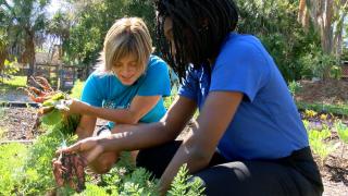 Sustainable Family Farm