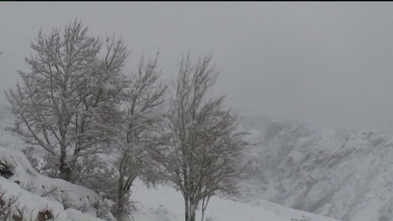 Farmers optimistic with reports of high snowpack levels across Utah