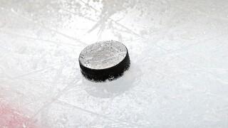 Hockey fan makes difficult shot, wins $100K