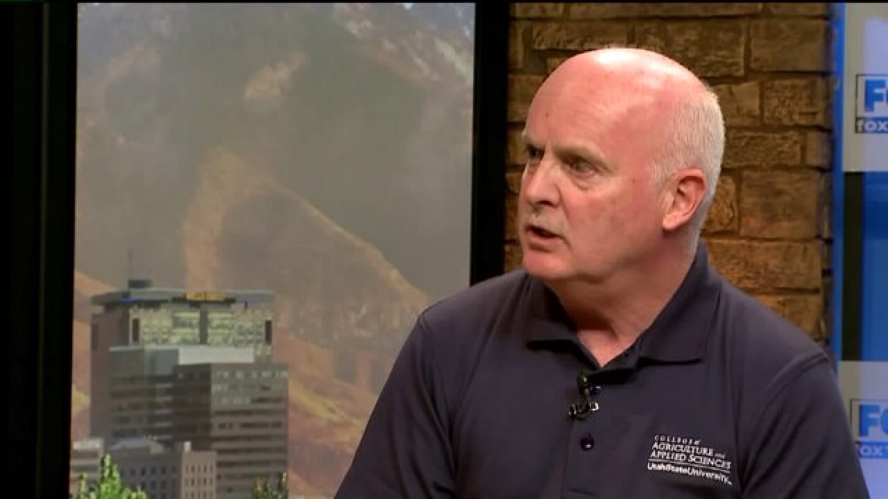 3 Questions with Bob Evans: State Climatologist talks climatechange
