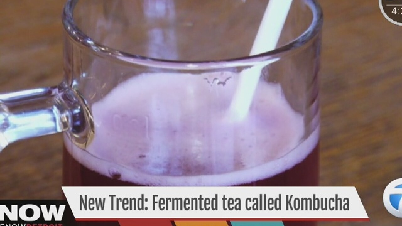 New craze with fermented tea called kombucha
