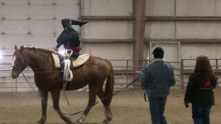 406 Arena offers year-round facility for horses
