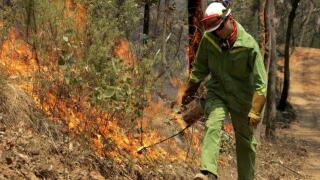 Prescribed burns planned in Boise National Forest