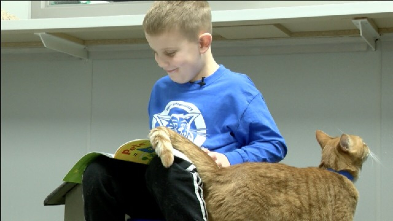 Reading to pets: SPCA serving kids and animals