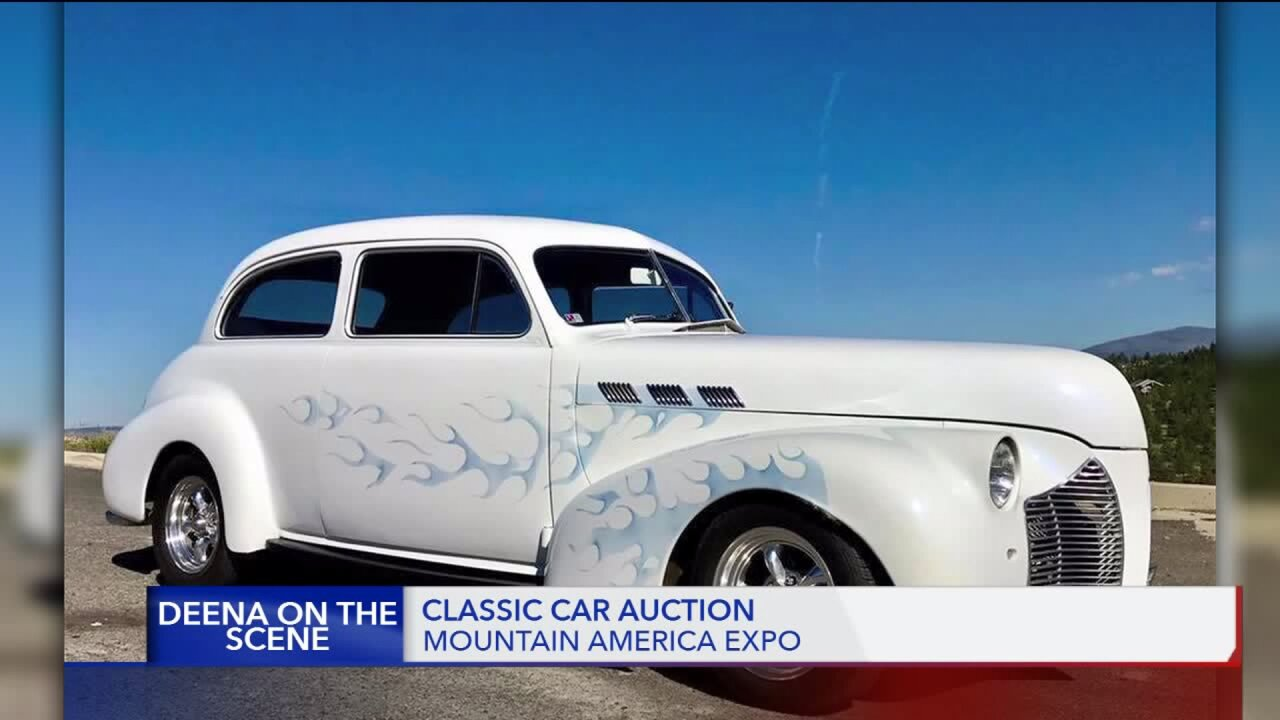 Deena on the Scene: festival of colors, classic car auction, and 'tats forcats'