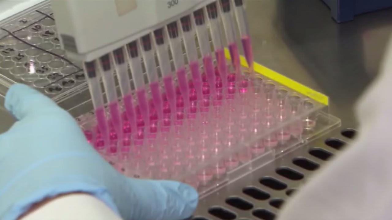 genetic testing.PNG