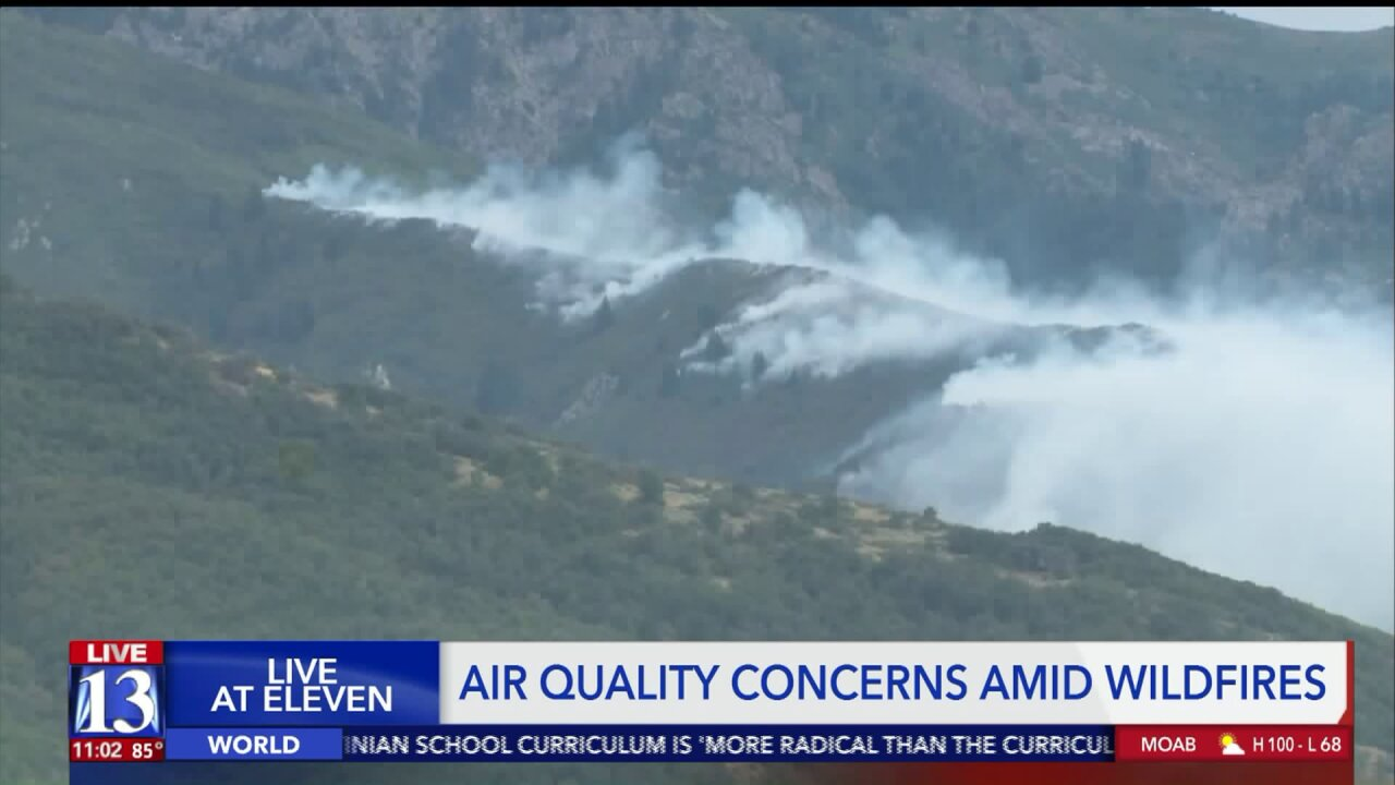 Experts discuss air quality amid smoke from wildfires in Utah