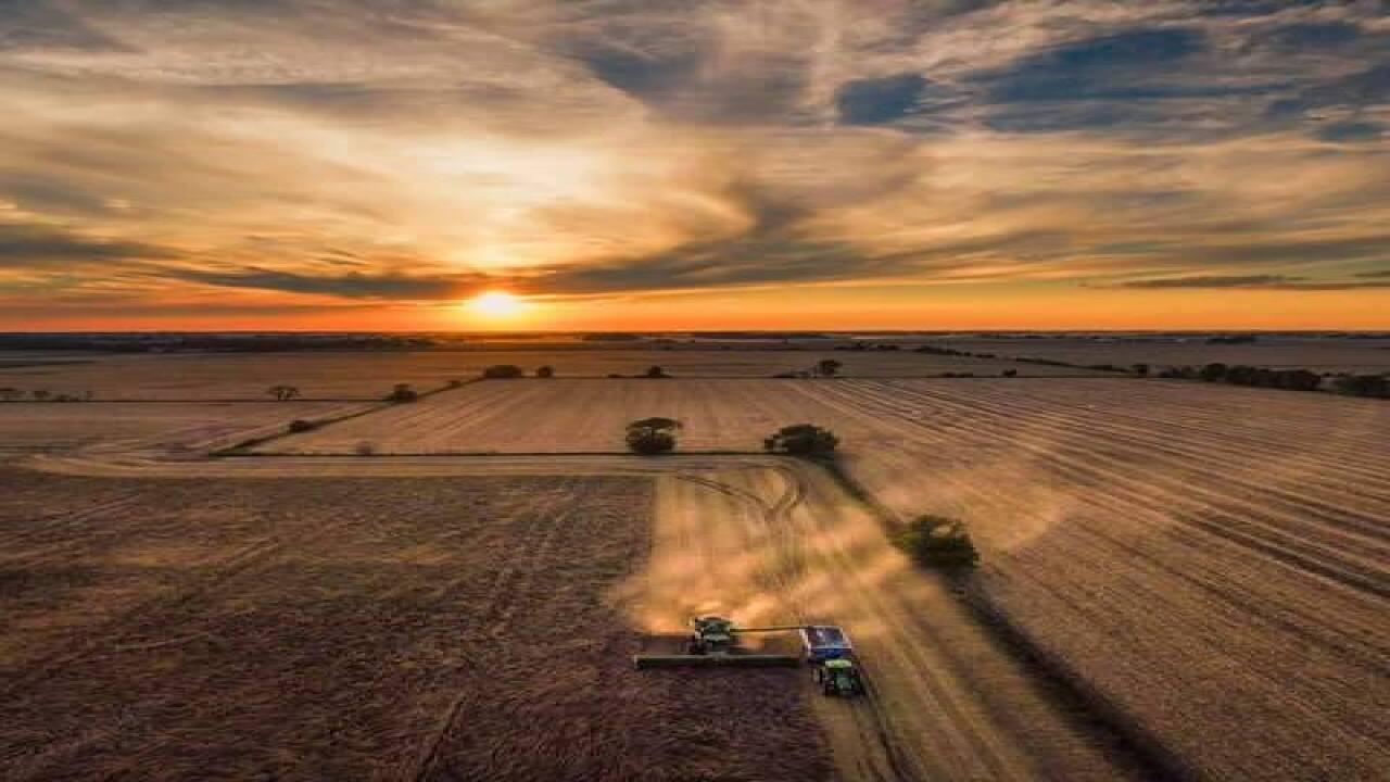 PHOTOS: Harvest time in Indiana