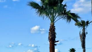 Clearing skies in Port Aransas - Photo By: Meteorologist Juan Acuna
