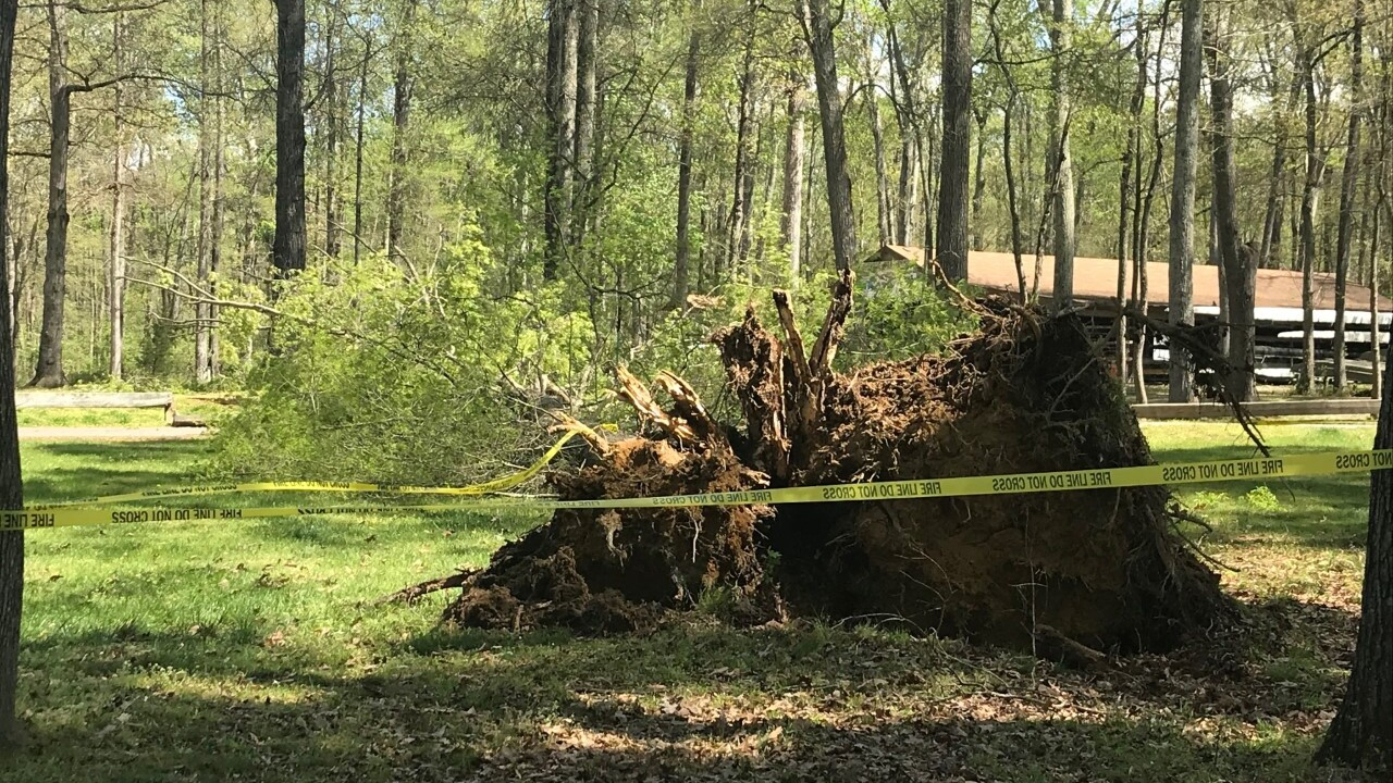 Storm damage at Robious Landing (SOURCE: Laura French)