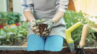 gardening generic