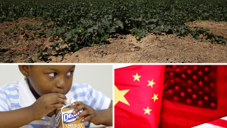 Ag Report: Climate Change, School Lunches, China Trade War