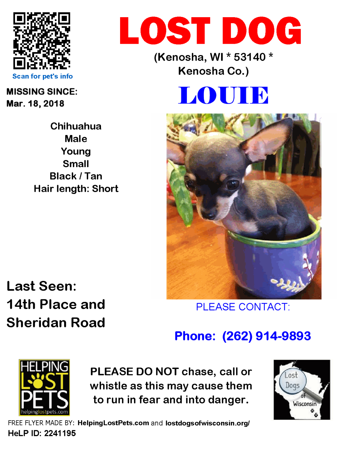 0518 Louie Chihuahua Young.png