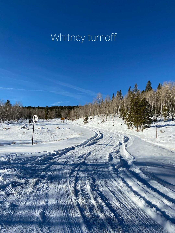 Uinta-Wasatch-Cache NF snow