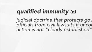 Should qualified immunity continue to protect law enforcement? Debate rages on in Michigan