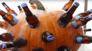 How To Turn A Pumpkin Into A Beer Cooler