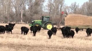 Montana Ag Network: Governor promotes Big Jobs Act to help producers