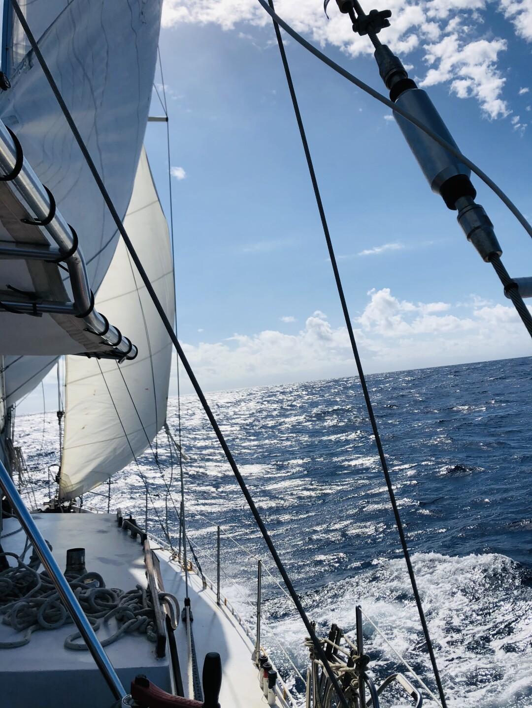 View of Marty Widrick and Sven Karrlson's sailboat at sea