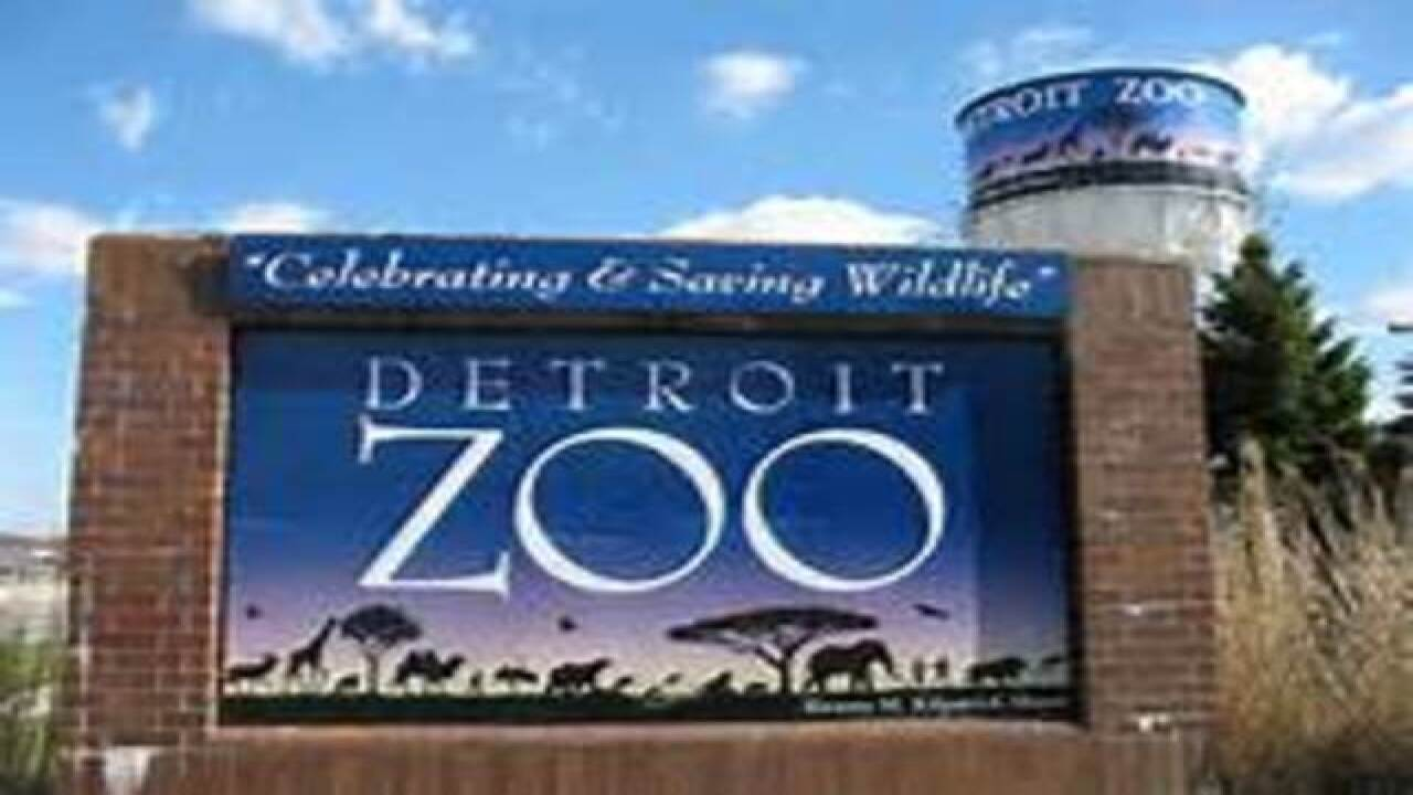 Seniors Day at Detroit Zoo Wednesday, Sept. 7