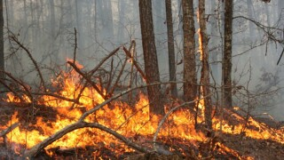 Missouri Department of Conservation encourages people to help prevent wildfires