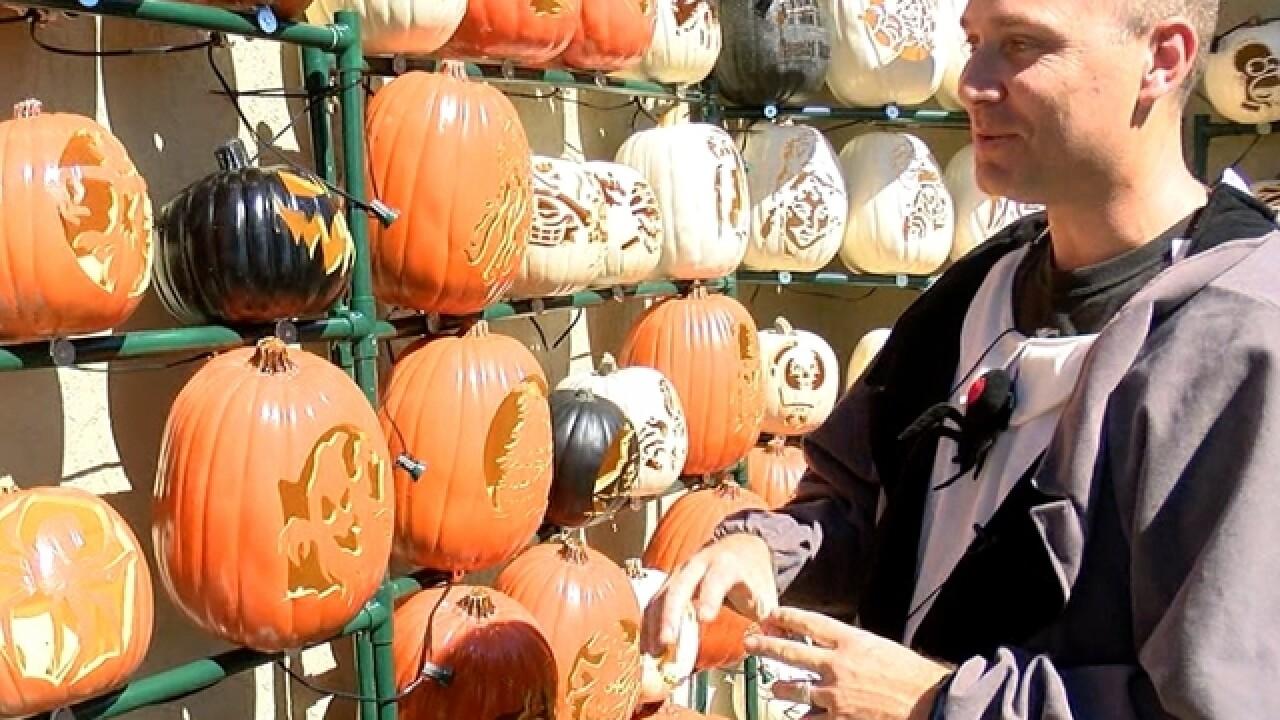 Pumpkin House display helps Moffitt fight cancer
