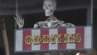 Richmond oddity shop Rest in Pieces: 'It's not just death'