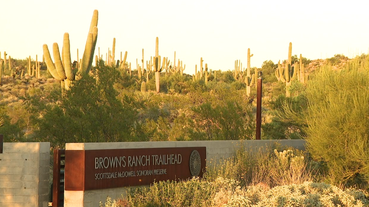 Brown's Ranch trailhead scottsdale