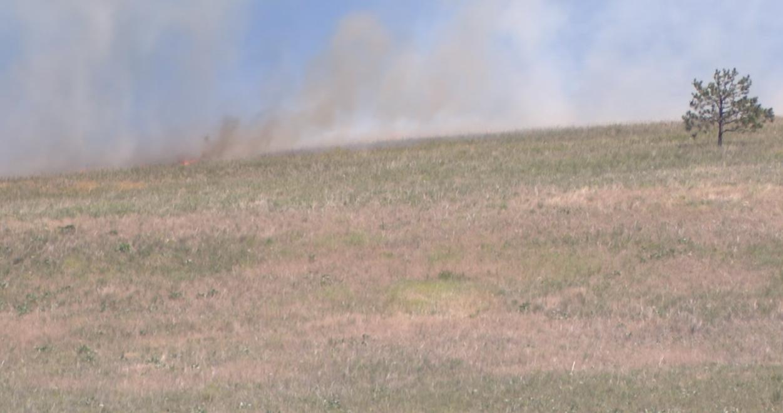 Grass Fire5.png