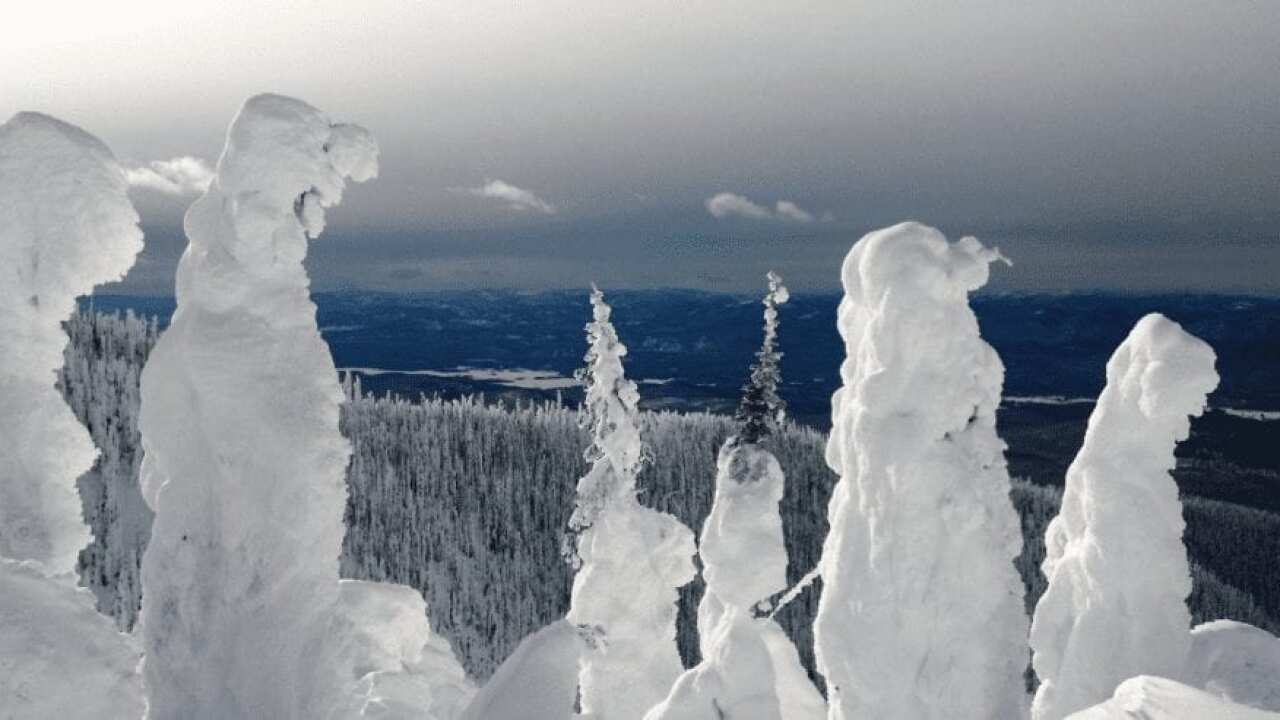 Cold weather slow thefts in the Flathead