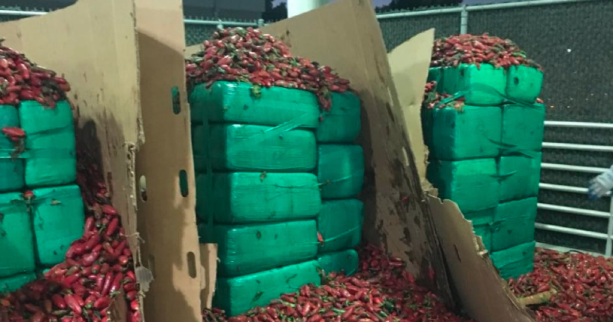 CBP officers find nearly 4 tons of pot in jalapeños shipment