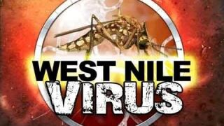 1st human Texas case of West Nile virus reported this year
