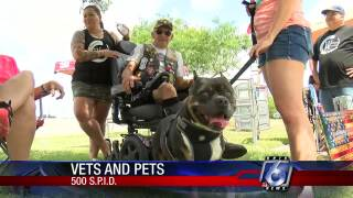 Vets and Pets event raises awareness for PTSD and animal therapy