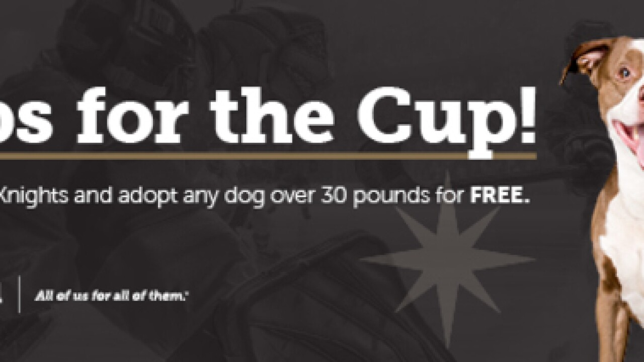 Animal Foundation offering free adoptions for dogs over 30 pounds in Pups for a Cup promotion