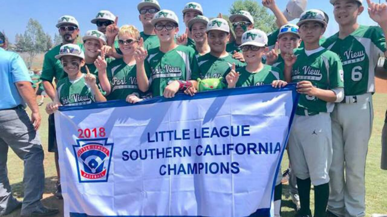 Rally being held for Park View Little League