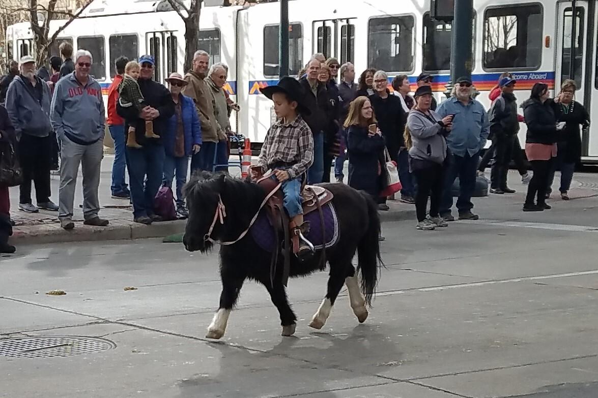 113 National Western Stock Show kick off parade_8.jpg