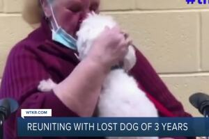 Local woman reunited with missing dog 3 years later