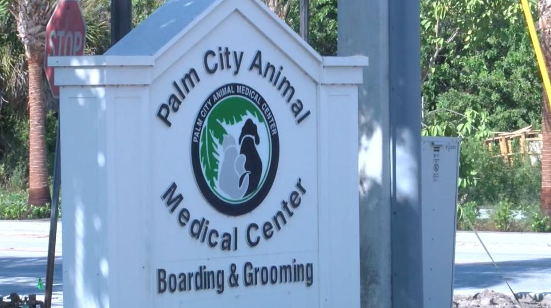 Palm City Animal Medical Center.PNG