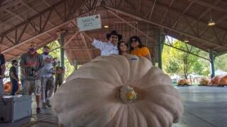 First place pumpkin grown by Mohamed Sadiq