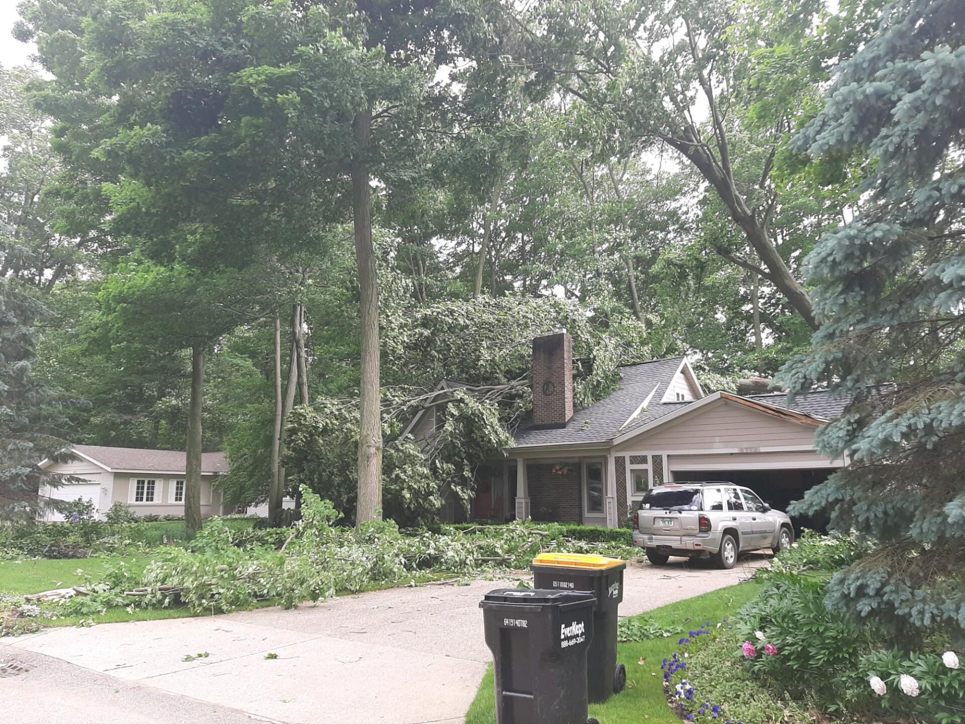 Gerogetown township storm damage.jpg