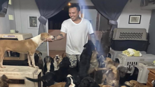 Man Brought 300 Dogs Home To Protect Them From Hurricane