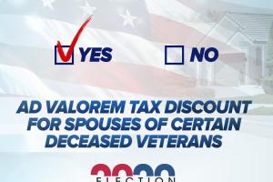Election2020-Amendment6_Yes.png