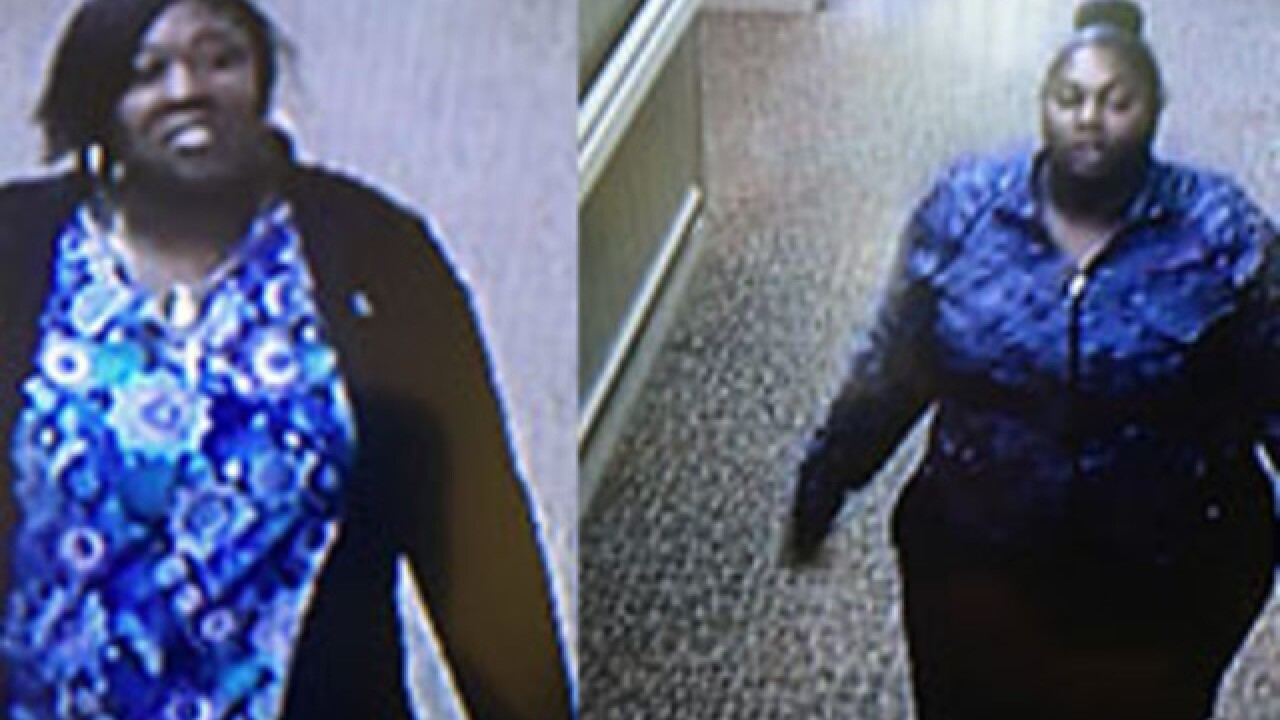 Women accused in Michigan credit card theft ring
