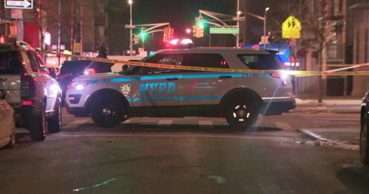 Man fatally shot in head, torso in Bronx: police
