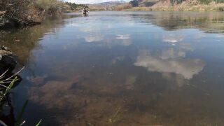 Montana, a multi-million-dollar fly fishing destination
