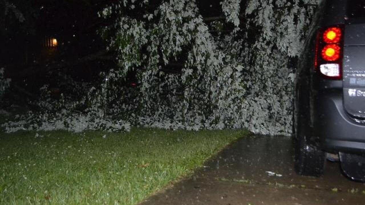 PHOTOS: Storm brings damage across area