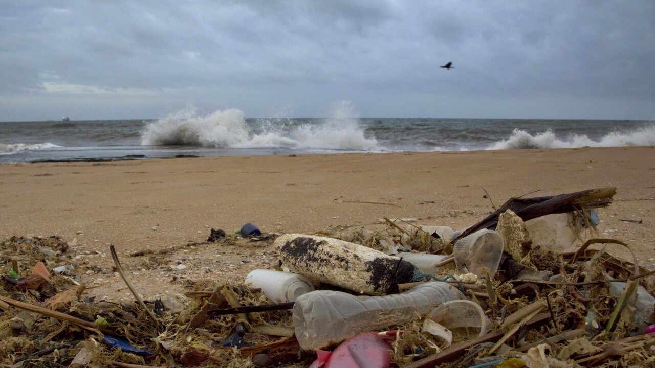 Study looks at how much plastic is settling to the bottom of the ocean