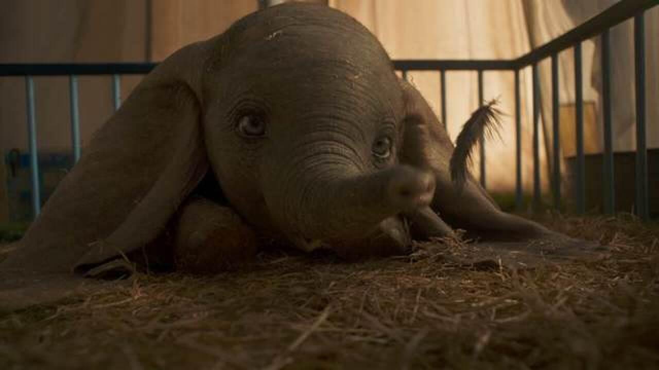 Watch the new Disney's Dumbo Trailer