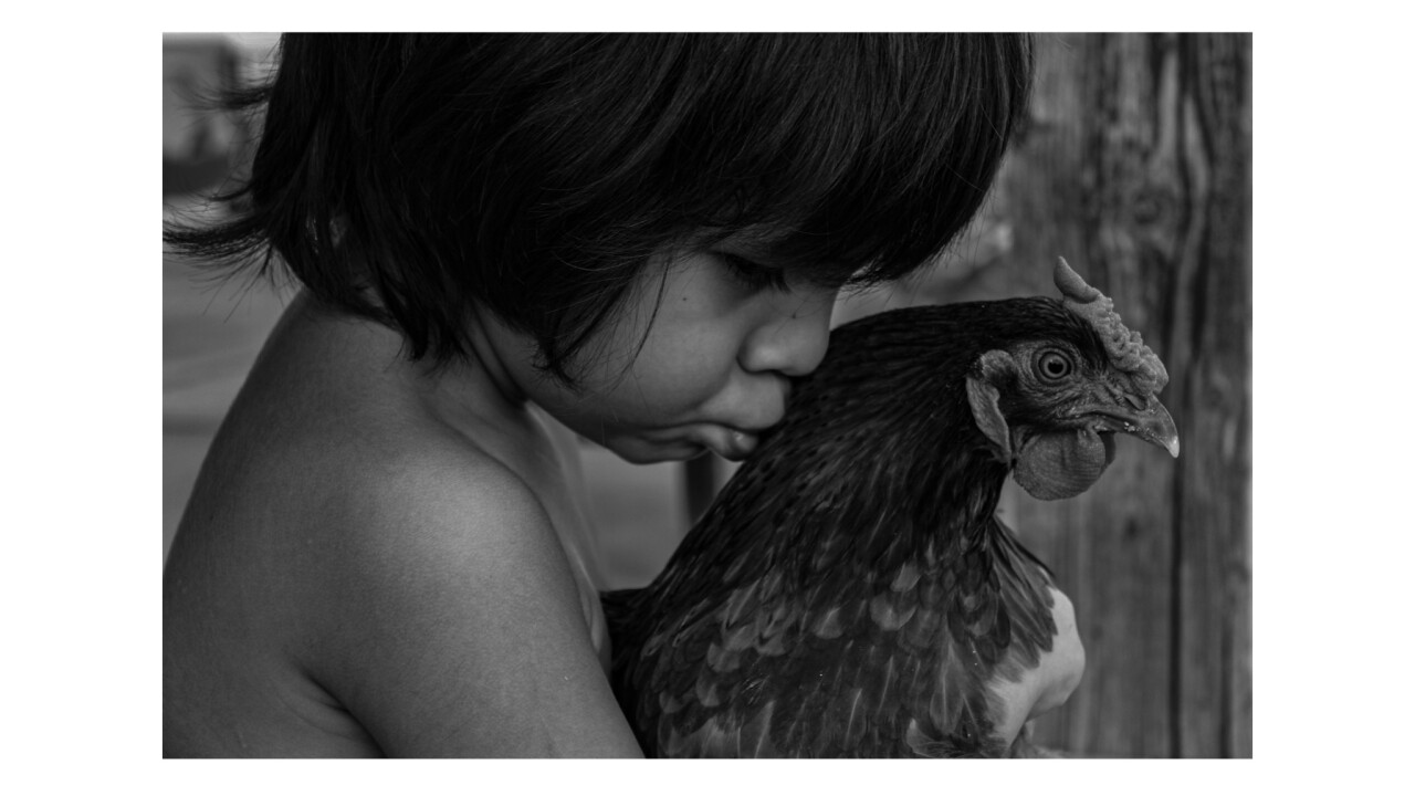 """""""Boy with Chicken"""" won Tucson High School junior Karissa Morales second place in the Nature Conservancy's """"Adventure in Nature"""" photo contest."""