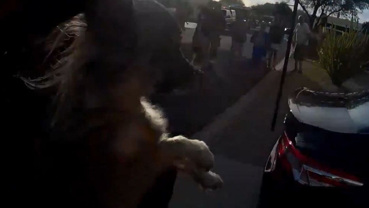 Tucson Fire crews rescued two dogs from a home last weekend.